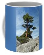 Ponderosa Pine And Granite Boulders Coffee Mug