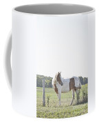 Pony Pride Coffee Mug