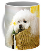 Poodle In Pouch Coffee Mug