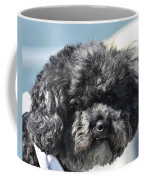 Poodle Coffee Mug by Susan Leggett