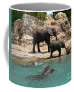 Pool Party Coffee Mug