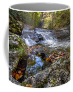 Pool Reflections Coffee Mug