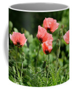 Poppies In My Garden Coffee Mug