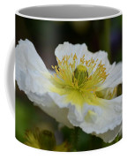 Poppy Adoration Coffee Mug