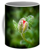 Poppy Bud Coffee Mug