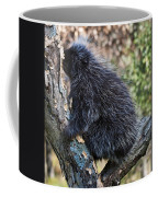 Porcupine Sleeping Coffee Mug