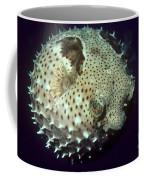 Porcupinefish Coffee Mug