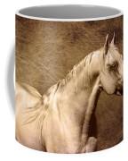 Portait Of A Stallion Coffee Mug