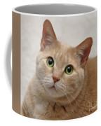 Portrait - Orange Tabby Cat Coffee Mug