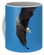 Portrait Of A Bald Eagle Launch Coffee Mug