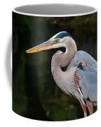 Portrait Of A Blue Heron Coffee Mug