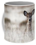 Portrait Of A Fawn Coffee Mug