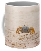 Portrait Of A Ghost Crab Coffee Mug