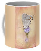 Portrait Of A Gray Hairstreak Coffee Mug