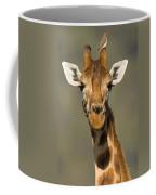 Portrait Of A Rothchilds Giraffe Coffee Mug