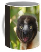portrait of a sifaka from Madagascar Coffee Mug