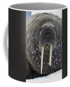 Portrait Of A Walrus Coffee Mug