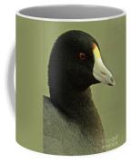 Portrait Of An American Coot Coffee Mug