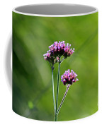 Portrait Of Purple Verbena Coffee Mug