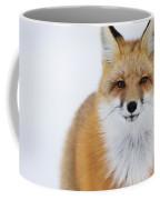 Portrait Of Red Foxchurchill Manitoba Coffee Mug