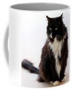Portrait Of Waffles Coffee Mug