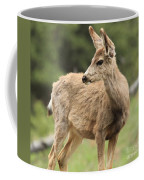Pose In The Rockies Coffee Mug