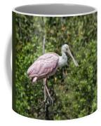 Posed Coffee Mug
