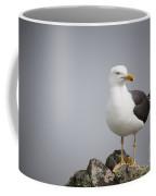 Posed Gull Coffee Mug