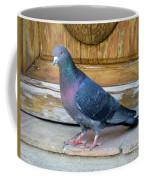 Posing Pigeon  Coffee Mug