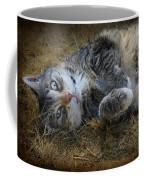Posing Prettily Coffee Mug