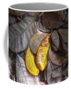 Pot-pourri Coffee Mug