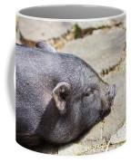 Potbelly Pig Coffee Mug