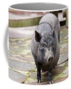 Potbelly Pig Standing Coffee Mug