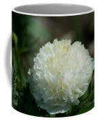 Potchen's Spring Coffee Mug