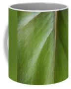Pothos Detail Coffee Mug
