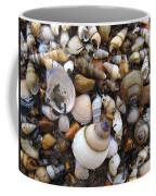 Potomac Shellscape Coffee Mug