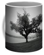 Potomac Tree Coffee Mug
