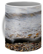 Potomac Water Snake Coffee Mug