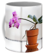 Potted Pink Orchid Coffee Mug
