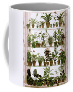 Potted Plants On Shelves Coffee Mug