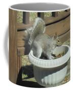 Potted Squirrel Coffee Mug