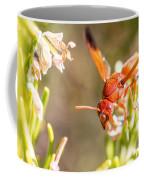 Potter Wasp Female Coffee Mug