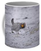 Prairie Chicken 2013-2 Coffee Mug