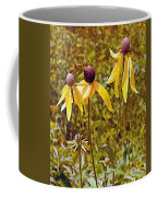 Prairie Coneflowers In Pipestone National Monument-minnesota  Coffee Mug