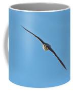 Prairie Falcon In A Dive Coffee Mug
