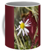 Prairie Flower And Red Lambs Quarter Coffee Mug