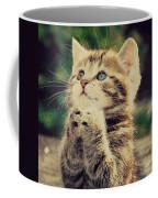Praying Cat Coffee Mug