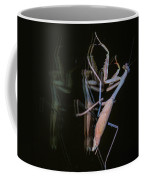 Praying Mantis 2 Coffee Mug