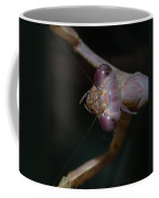 Praying Mantis 3 Coffee Mug