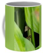 Praying Mantis Peekaboo Coffee Mug